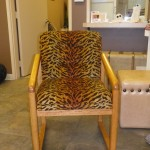 There's a Cheetah on your chair!